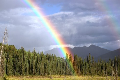 rainbow-436183__340